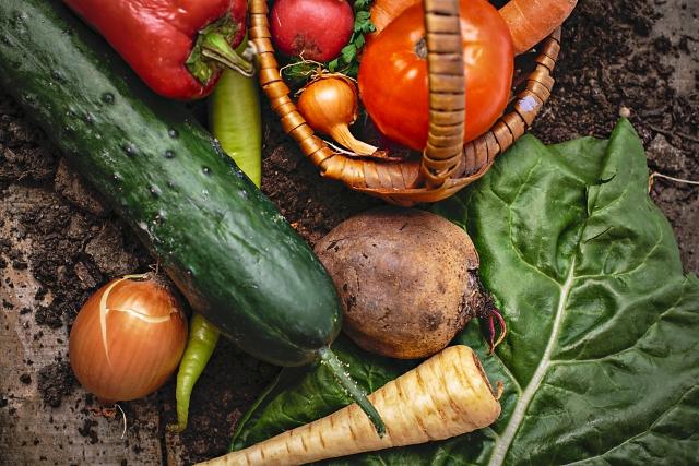 衛生管理と衛生管理計画 :その8・・・一般衛生管理:生き物を食べ物にする処理方法