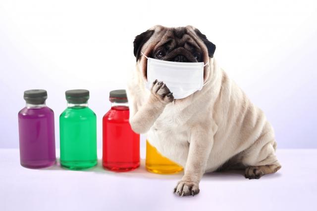 感染症対策に対する雑感